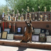 French RingSport, French Ring clubs arizona
